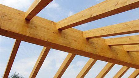 Perchè scegliere un tetto in legno?